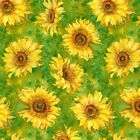 Slice of Sunshine Sunflowers by Wilmington Prints BTY Sunflowers