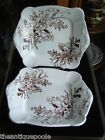 2 Victorian English Porcelain Aesthetic Brown Transfer Floral Sprays Plate Tray