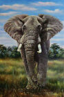 Elephant At The Savanna, Original Wild Life Oil Painting on Canvas, 24