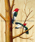 Birds In The Woods, Original Wild Life Animal Oil Painting on Canvas, 30
