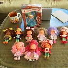 Strawberry Shortcake Vintage Brazil Doll lot!!!