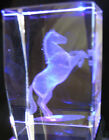 2 by 3 Laser Etched 3D Horse Crystal Clear Glass Paperweight with case
