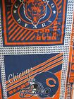Rare OOP Chicago Bears Pillow Panels Football Helmet and Grizzly Bear Sports 85