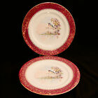 PAIR OF CASTEL LIMOGES PORCELAIN PLATES (2) Birds and Flowers- BEAUTIFUL!