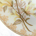 Co HAVILAND LIMOGES HAND PAINTED 8.5 INCH PLATE, LOVELY