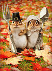 Chipmunk Couple Funny Humorous Thanksgiving Card Greeting Card by Avanti Press