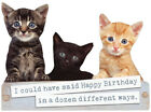 Box Of Kittens Die Cut Cute Cat Birthday Card by Paper House Productions