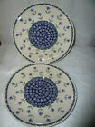 """ Stoneware Large Dinner Plates Floral"