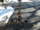 Antique Victorian Oil Lamp Chandelier Cast Iron with 3 Arms