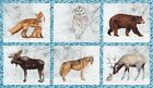 Robert Kaufman Frost Winter White 2 Animals 100 Cotton Fabric by the Panel 24