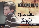 2011 Cryptozoic The Walking Dead Trading Cards 32