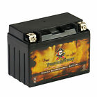 YTX12 BS ATV Rechargeable AGM Battery for Honda 250cc TRX250 Recon ES 1997 2003