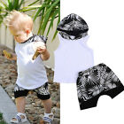 Newborn Toddler Kid Baby Boy Clothes Hoodie T shirt Tops Shorts Pants Outfit Set