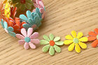 125 Daisy yellow pink light green Orange Light Blue Iron on Embroidered Trim