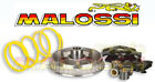 vario drive MALOSSI for LINHAI MONARCH 125 150 4T WT MOTORS AKASH 150 NEW