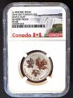 2016 CANADA SILVER MAPLE LEAF, GILT, REVERSE PROOF,  $3, NGC PF-69