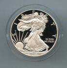 2010 1 Proof American Silver Eagle Complete Box and Papers Choice Proof