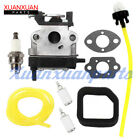 Carburetor Tune Up Kit For Toro 51946 51947 51948 51952 51956 51957  308480001