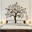 Timber Artbox Beautiful Family Tree Wall Decal with Quote The Only Dcor You