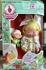 Vintage Strawberry Shortcake Mint Tulip Berrykin American Greetings Berrykins