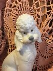 LLADRO NAO 490 French Poodle Retired! Chipped Toe! No Box! Great Gift! L@@K!