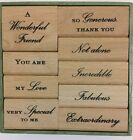 Anna Griffin Wood Mount Stamp Set 9p rubber stamps You Are fabulous friend love
