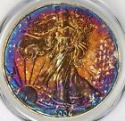 2006 P Silver Eagle 20th Anniversary Reverse Proof PCGS Proof PR67 Monster Toned