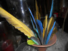 LOT 20+PARROT FEATHERS BLUEGOLD MCCAW LOT TIE FLY