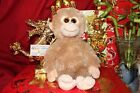 TY CLASSIC BISCUIT THE BEANIE MONKEY 11