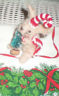 NEEDLE FELTED BUNNY BABY RABBIT CHRISTMAS OOAK HAND MADE MINI TREE CANDY CANE