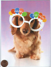 Long Haired Dachshund Puppy Dog Funny Glasses Happy Birthday Greeting Card NEW