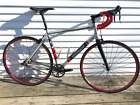 Specialized Langster 56 custom