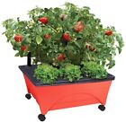 Patio Raised Garden Bed Glow Box Planter Pot Watering Compact Tomato Vegetables
