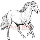 Deep Red Stamps Wild Horse Rubber Cling Stamp