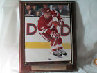 STEVE YZERMAN ACTION PLAQUE 13 X 10 1 2 SAME DAY SHIPPING FROM MICHIGAN