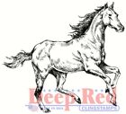 Deep Red Stamps Spirited Horse Rubber Cling Stamp