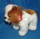 Ty Large Plush Beanie Buddy Regal ( King Charles Spaniel Dog ) MWMT