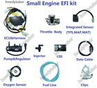 motorcycle ATV scooter buggy moped UAV EFI engine Electronic Fuel Injection kit