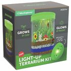 Light up Terrarium Kit for Kids with LED Light on Lid Great Science Gift
