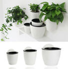 Self watering Plant Flower Pot Wall Hanging Planter House Garden Useful