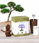 Bonsai Garden Seed Starter Kit Easily Grow 4 Types of Miniature Trees Indoors
