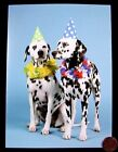 Dalmation Puppy Dogs Hats Leis Party Cute Happy Birthday Greeting Card NEW