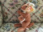 Ty Beanie Baby collection Kangaroo Pouch, 1996