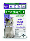 READ ABOUT FAKES 6Pk Bayer Advantage II Flea Control LARGE Cats 9+ lbs 8+ WEEKS
