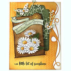 Cards Making DIY Cutter Punch Scrapbooking Stencils Embossing LACE Cutting Dies