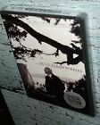 NEW Wild Strawberries Criterion Collection DVD Subtitled