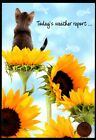 Thinking Of You Cat Kitten Sunflowers Fish Clouds Thinking of You Greeting Card