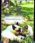 Sweet Cats Kittens Snuggling All You Need Is Love SMALL Blank Card NEW