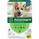 READ ABOUT FAKES 6Pk Bayer Advantage II Flea Control Extra Large Dogs 55+ lbs