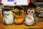 Ty Beanie Baby – Lot of 3 Owls – Smartest, Wise, Class of  2004